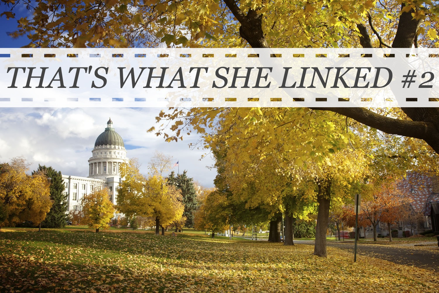 That's What She Linked #2
