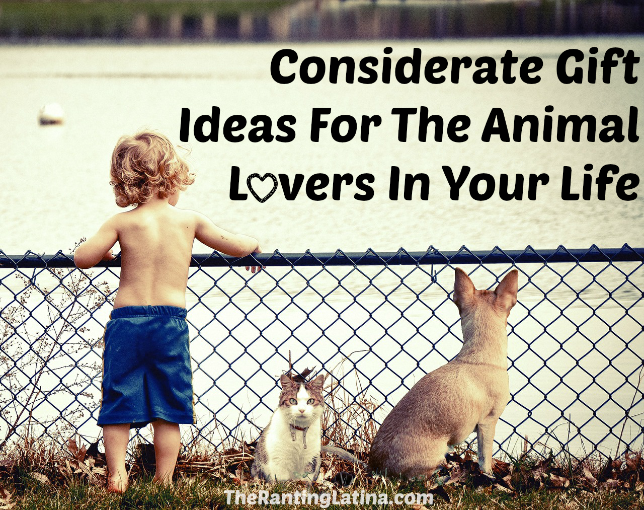Considerate Gift Ideas for Animal Lovers