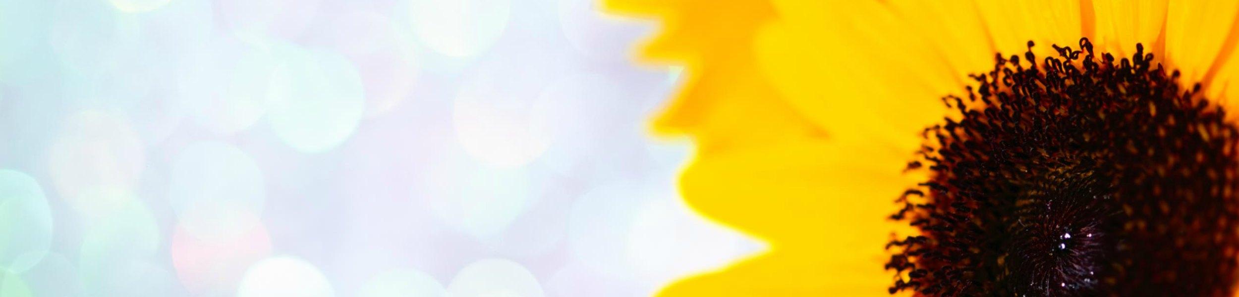TRL-Homepage-Slider1*