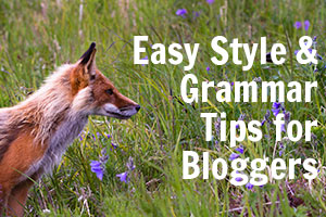 Easy grammar tips for bloggers
